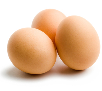 635693470300252970eggsisolate.jpg