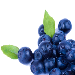 636504794935116279blueberry crop.png