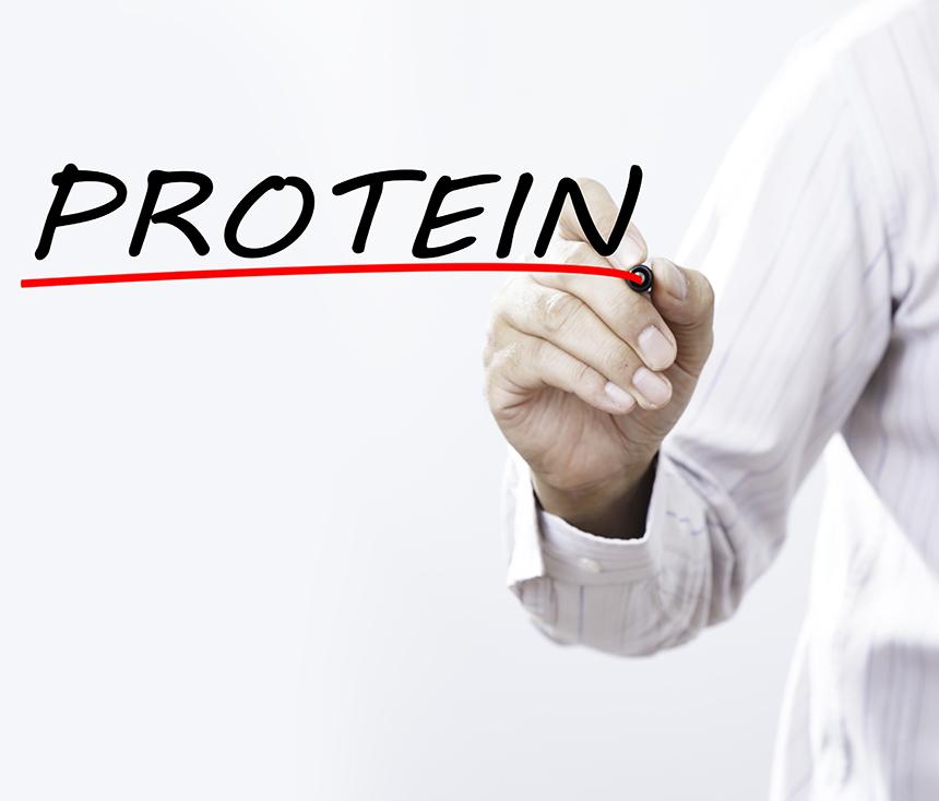636602456878481596protein.jpg