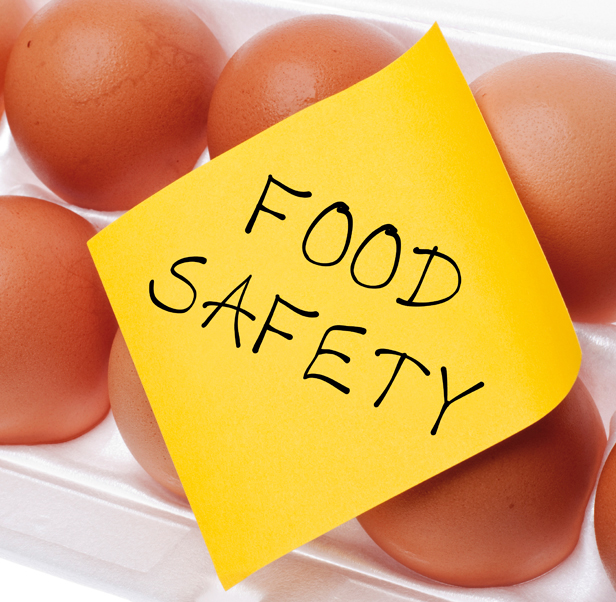 636736324779213655egg food safety.jpg