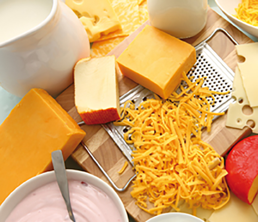 No more cheese allergies? Research identifies bacteria that
