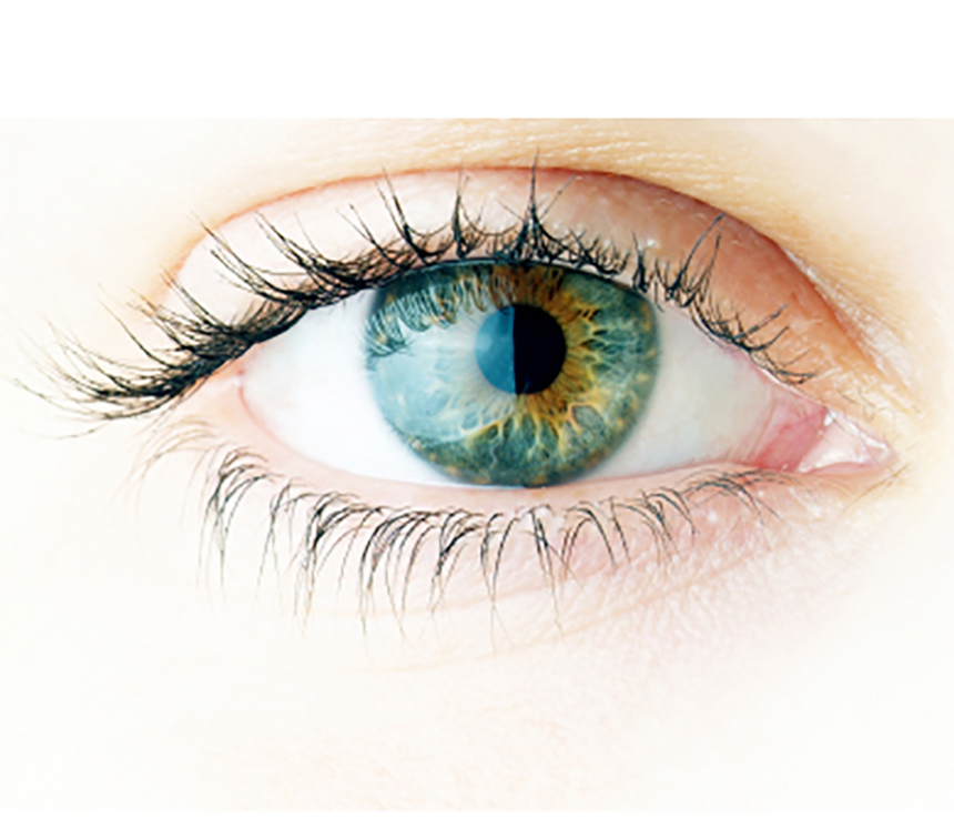 Sight For Sore Eyes New Study Backs Maquibright S Efficacy In