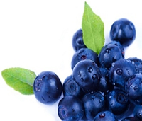 636772639458188508fruit blueberry 1.jpg