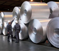 "European aluminum foil achieves growth despite ""volatile"" international trade flows"