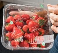 """Purposeful packaging"": It's Fresh! optimizes fruit & veg shelf-life with innovative technology"