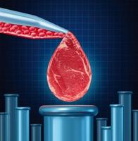636863369662416570lan grown meat.jpg